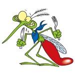 Изготовление и установка москитных сеток - защита от комаров