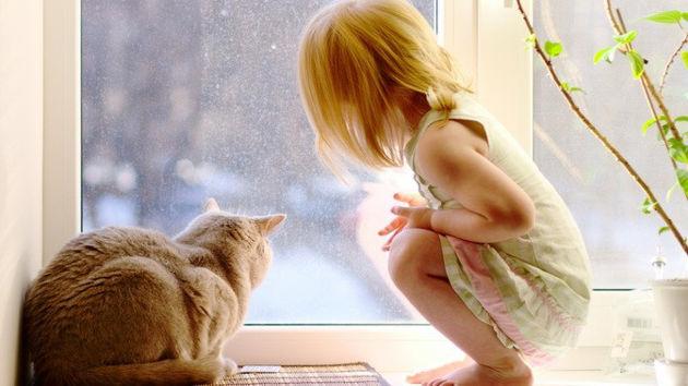 Заказать теплое и безопасное окно в Сызрани
