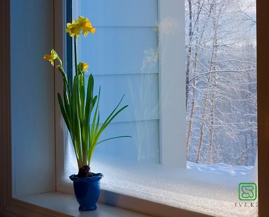 Сильные морозы испытают пластиковые окна